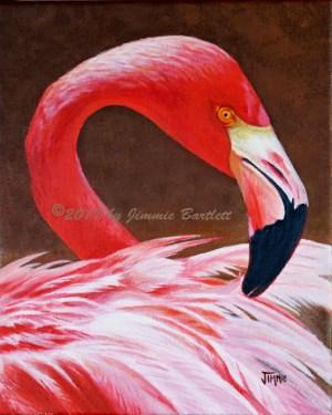 Flamingo Fluff WEB