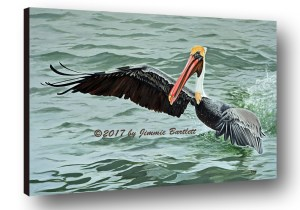 Pelican Splash Painting