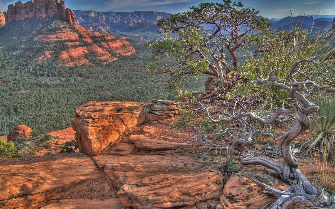 SEDONA AND THE VERDE CANYON TRAIN