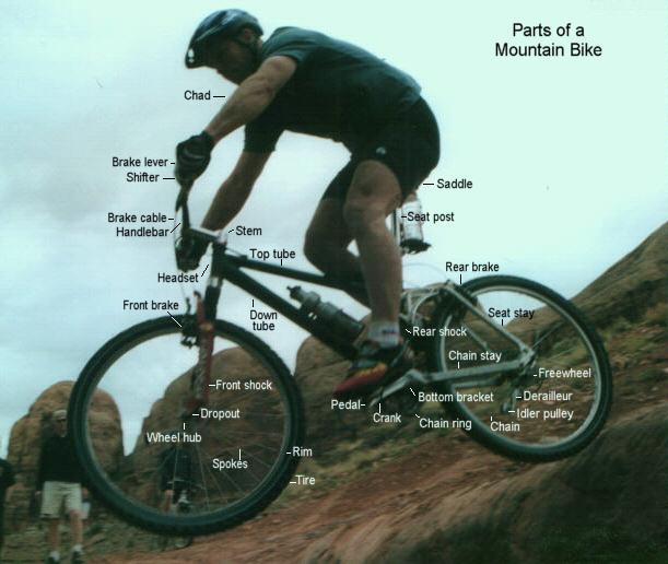 Barton Haynes San Diego CA Mountain Bike