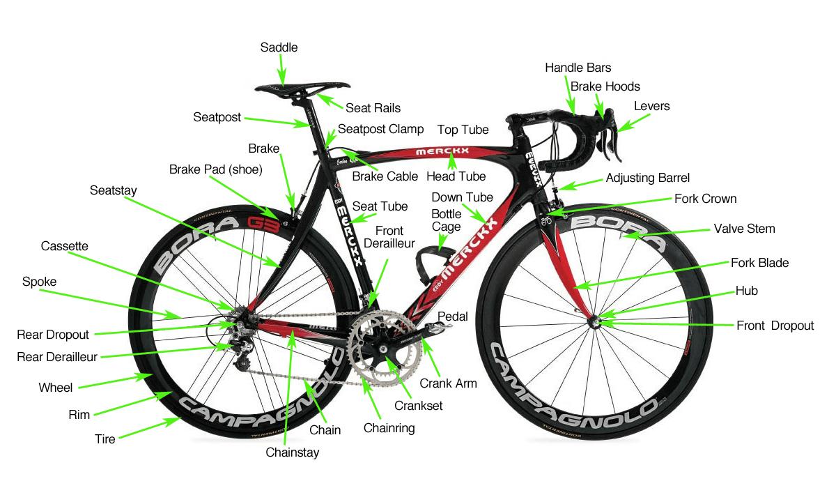 Barton Haynes San Diego California Diagram bicycle parts barton haynes barton haynes cycling