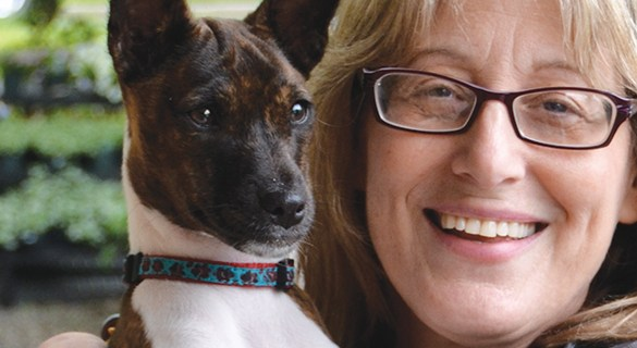 New book tells stories of ambassador dogs