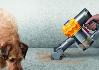 Dyson V6 Top Dog launches this fourth of July