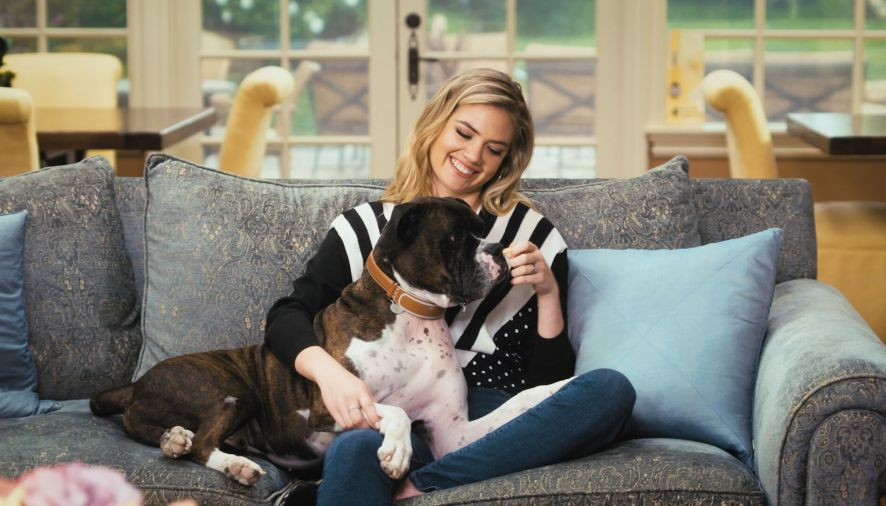 Smart collar helps Kate Upton stay in touch with her dog