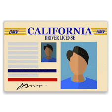 State requirements for all drivers in California