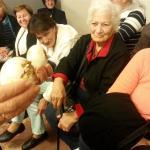 יום כיף למבוגרים בצפון - ברווזים בכפר