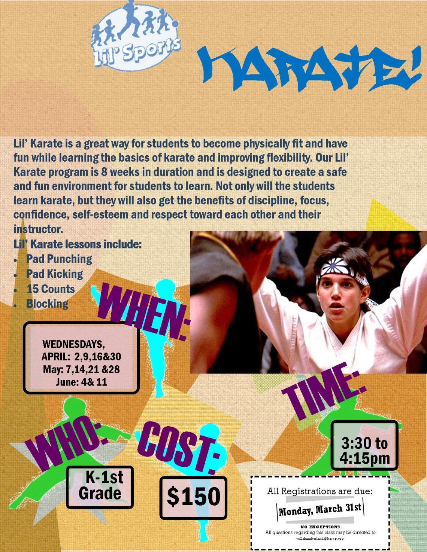 lil sports karate