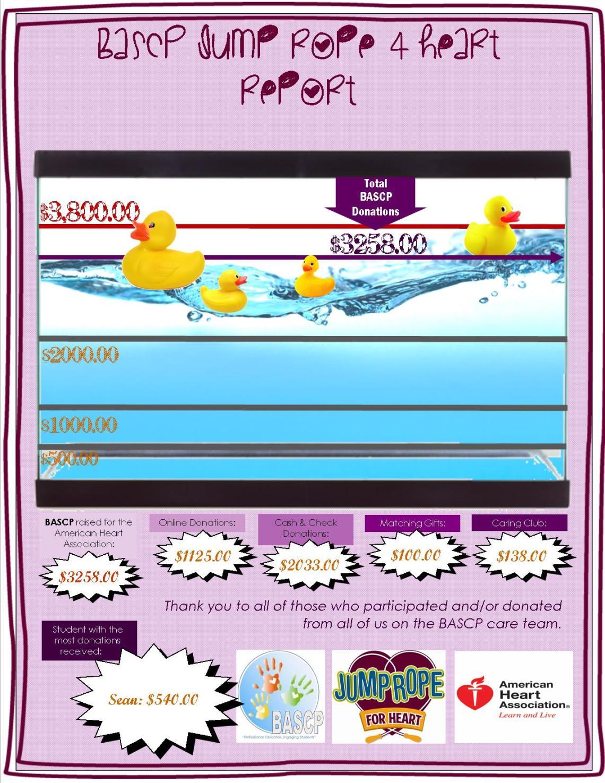 donations for ducks tracker final