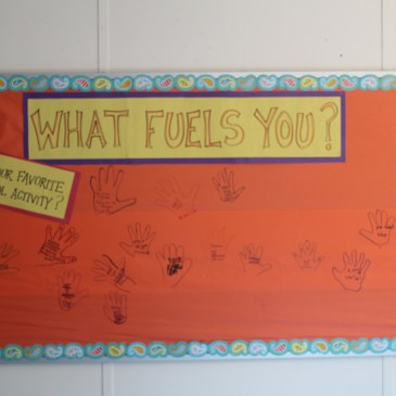 What Fuels You Board