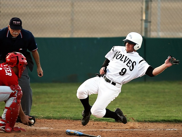 are you a baseball novice give this a read 1 - Are You A Baseball Novice? Give This A Read!