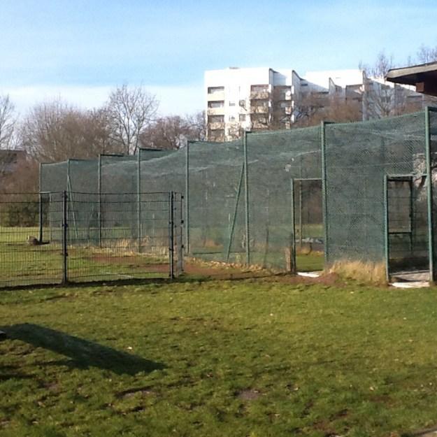 Cage 2015 - Berlin Gropiusstadt