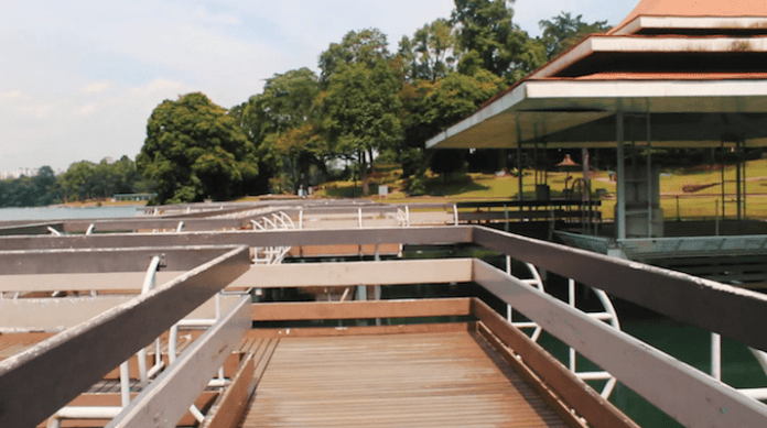 MacRitchie Reservoir Zig Zag Bridge