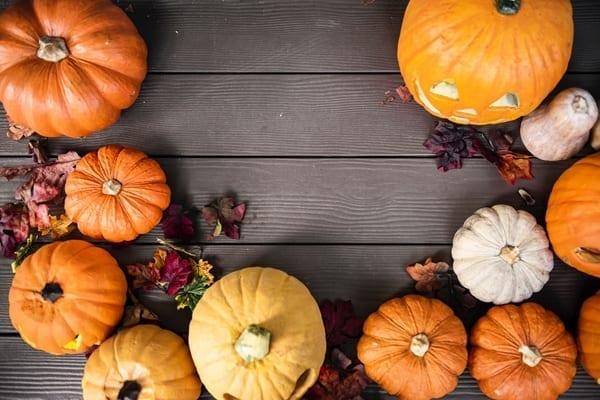October Treat – Pumpkin Pie