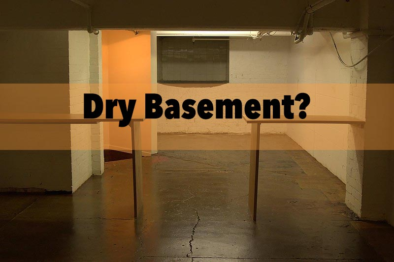 royal Oak basement?