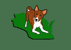 Basenji Club of Southeastern Wisconsin Brindle