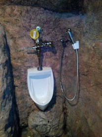 Uhm, het urinoir snap ik, maar is die slang voor als je andersom staat?