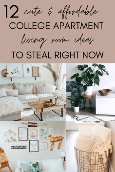 12 super cute and affordable college apartment living room decor ideas to copy now!