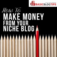 How You Should Be Making Money from Your Niche Blog