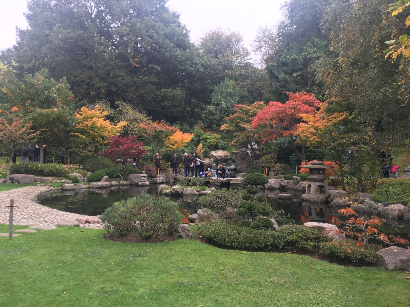Autumn Foliage in Holland Park