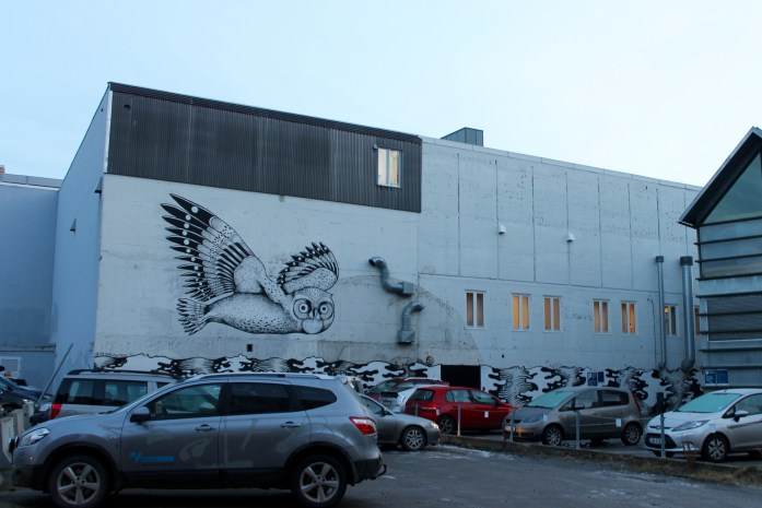 owl mural in Tromsø, Norway