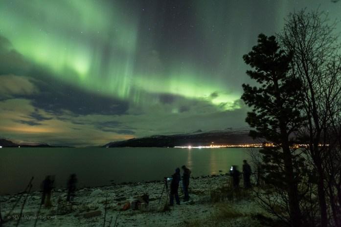 Incredible Northern Lights in Skibotn, Norway