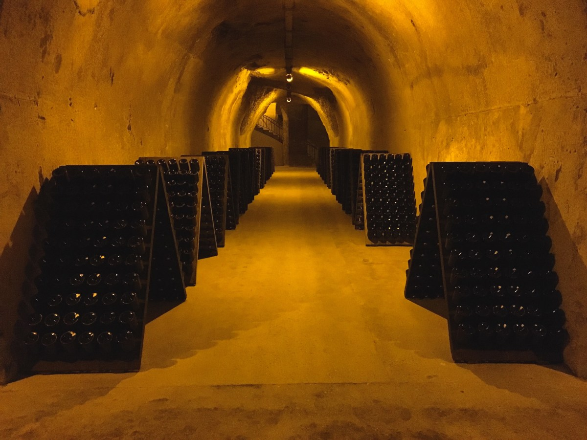 The Best Champagne Houses to Visit in Reims
