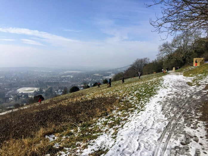 Box Hill Sledding