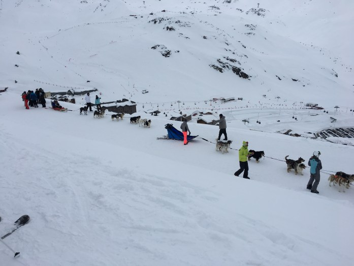 Dog Sledding in the Three Valleys