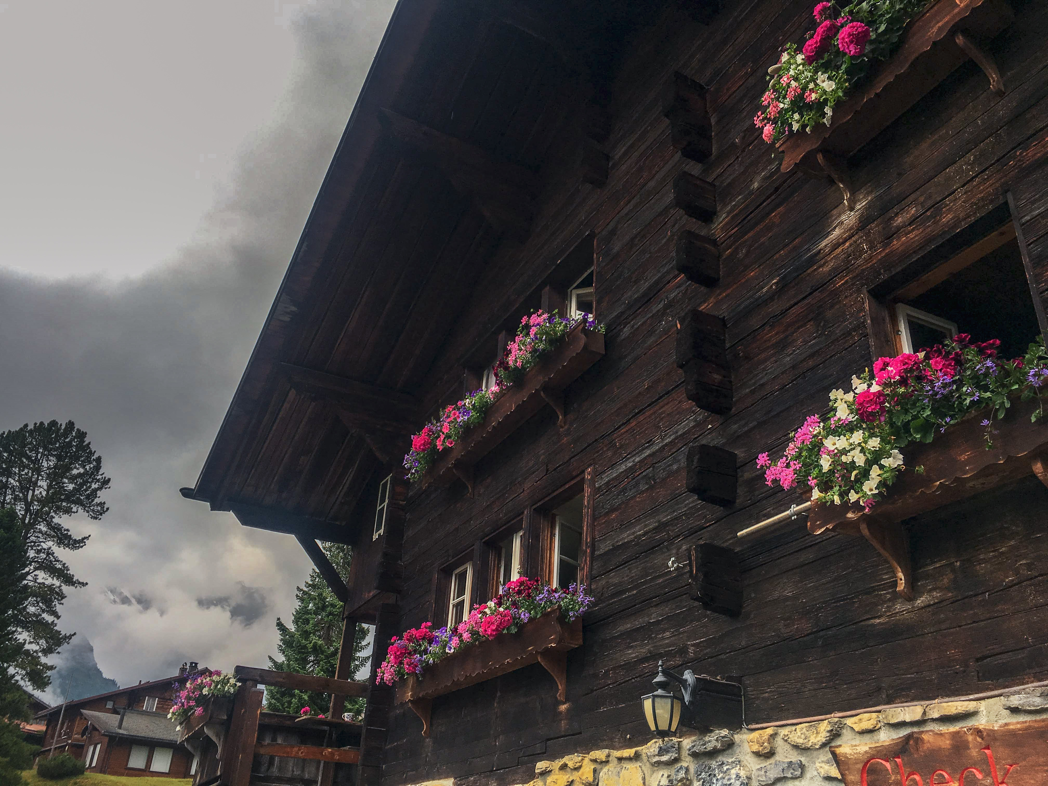 Mountain Hostel, Gimmelwald