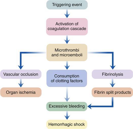 alterations  hemostasis  blood coagulation basicmedical key