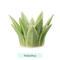 Aloe Vera like Wax Melt Warmer 2