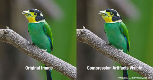 JPEG Compression Artifacts Comparison 2x