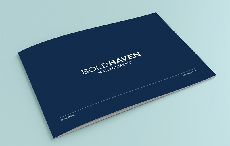 Boldhaven Management