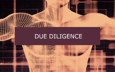 Due Diligence When Selecting an IT Solution or Service Provider