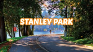 Stanley Park Vancouver - Everything You Need to Know About This Park