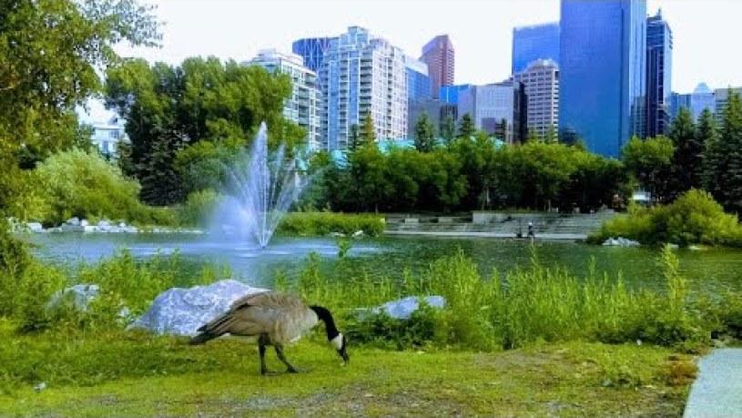 Prince's Island Park Calgary Ab