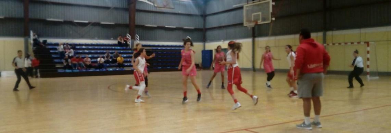 Los padres de las jugadoras del Ariagona Lanzarote estuvieron a punto de provocar la suspensión de un partido en el Regional Preinfantil Femenino por insultos graves a los árbitros