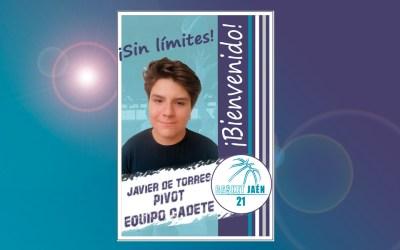 Bienvenido!!! Javier de Torres.