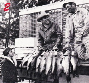 Tom Mann and Ray Scott hoist one of Mann's limits from Seminole. Notice the stringer - something that Ray Scott would soon get away from. All 940 bass were cleaned and donated to the Sherrifs Boys Ranch of Hahira, GA and Live Oak, FL as well as the Sunland Training School at Marianna, FL. Courtesy of Bass Master Magazine May/June 1971.