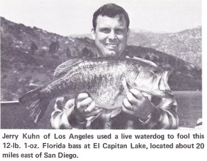 Another trophy Florida strain largemouth falls, this time to a waterdog. Lake El Capitan in 1969, only a few years after planting. Photo Lee Schlimmer for Bass Master Magazine 1969.