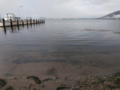 琵琶湖大橋西詰の観光船桟橋付近