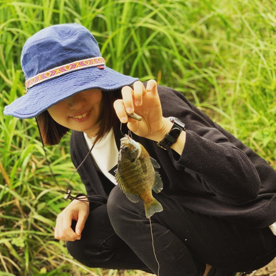 【電車釣行】印旛沼水系 新川・花見川 釣りガールのバス釣り3度目の正直となるか?