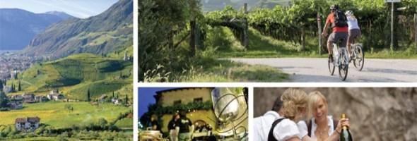 Vino in Festa 2013: il meglio della produzione enogastronomica dell'Alto Adige. Da scoprire in bici, su smartphone o con il nuovissimo Winepass