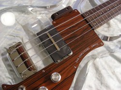 Ricken, Ampeg, Gibson, Vintage style…