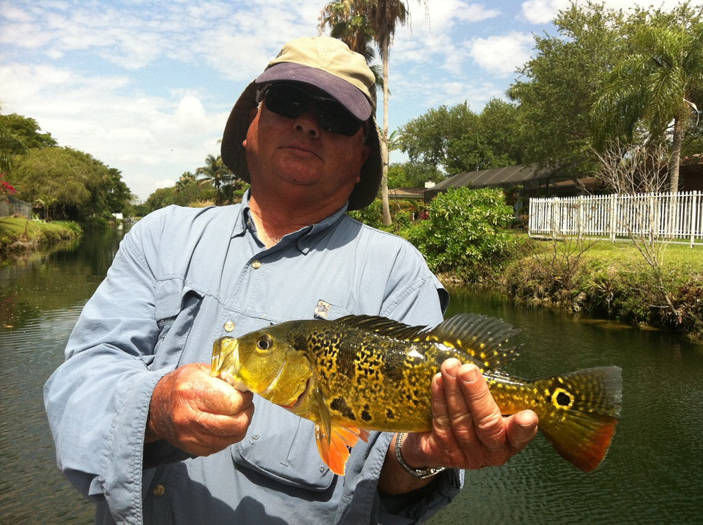 Great day peacock bass fishing with capt brett bass for Is today a good day to go fishing