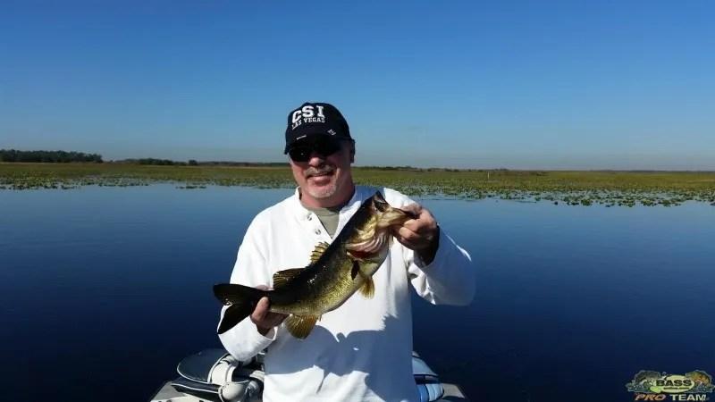 Fishing reports archives orlando bass fishing guide for Lake toho fishing guides