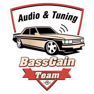Наклейка «BassGain Team» 1