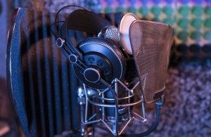 microphone filter, head set,