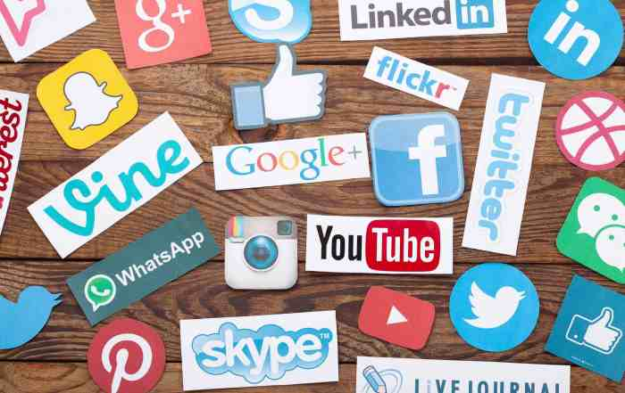 How to add Social Media Feed to your WordPress Website?