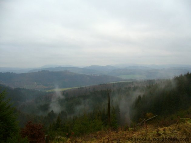 Dampfende Wälder